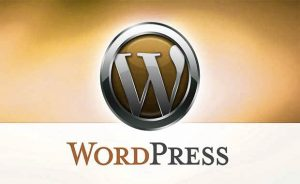 Wordpress Consultants in Berks County Pa