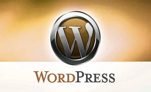 WordPress Website Consulting